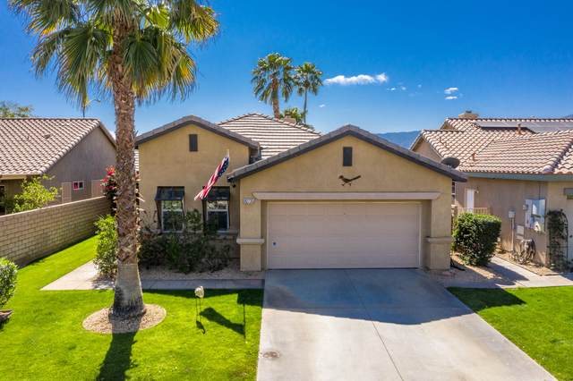 82735 Scenic Drive, Indio, CA 92201 (MLS #219040561) :: The Sandi Phillips Team
