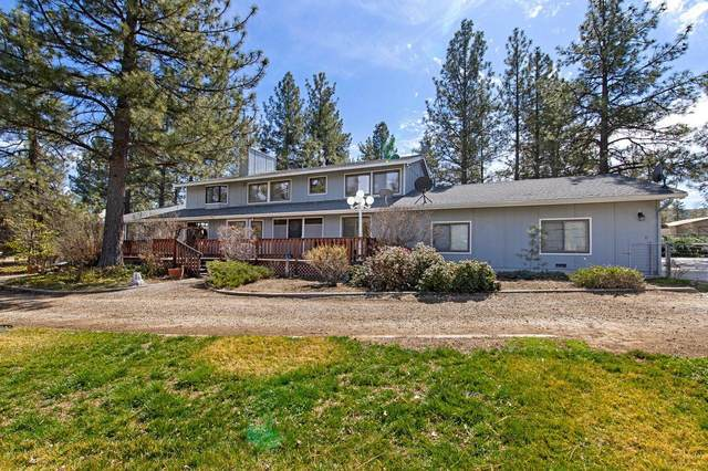 36581 Tool Box Spring Road Road, Mountain Center, CA 92561 (MLS #219040600) :: The Jelmberg Team