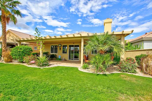 49670 Wayne Street, Indio, CA 92201 (MLS #219040674) :: The Sandi Phillips Team