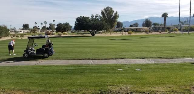 73391 Broadmoor Drive, Thousand Palms, CA 92276 (MLS #219040803) :: The Sandi Phillips Team