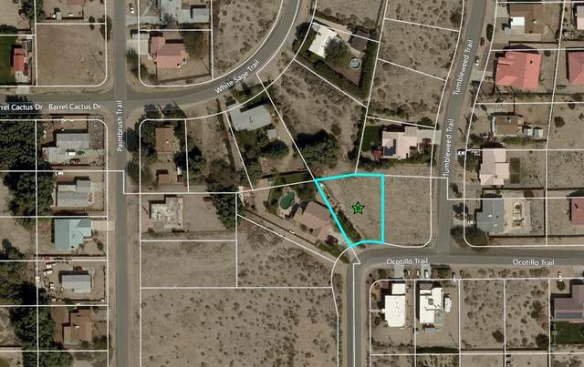0 Ocotillo Trail, Desert Hot Springs, CA 92240 (MLS #219040838) :: The Sandi Phillips Team