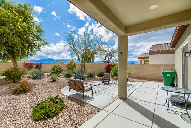 81947 Corte Valdemoro, Indio, CA 92203 (MLS #219041143) :: The Jelmberg Team