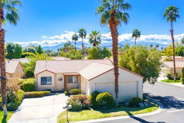77871 Calypso Road, Palm Desert, CA 92211 (MLS #219041155) :: Brad Schmett Real Estate Group