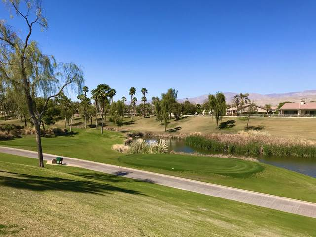 80328 Camino Santa Elise, Indio, CA 92203 (MLS #219041198) :: Brad Schmett Real Estate Group