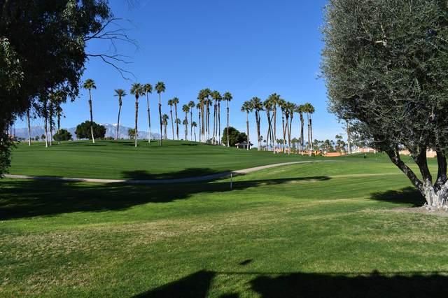277 Vista Royale Circle, Palm Desert, CA 92211 (MLS #219041316) :: HomeSmart Professionals