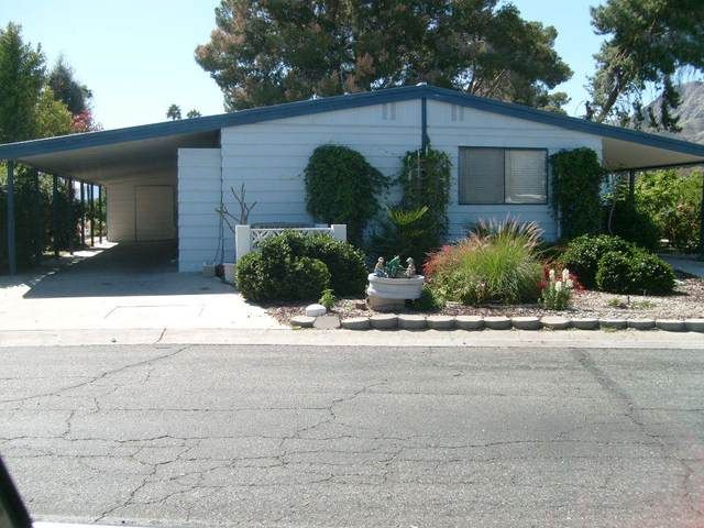 461 Cerritos Way, Cathedral City, CA 92234 (MLS #219041336) :: The Jelmberg Team