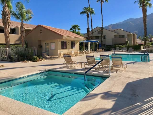 222 N Calle El Segundo, Palm Springs, CA 92262 (MLS #219041355) :: Mark Wise | Bennion Deville Homes