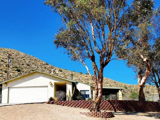 49000 Buena Vista Drive, Morongo Valley, CA 92256 (MLS #219041375) :: The Jelmberg Team