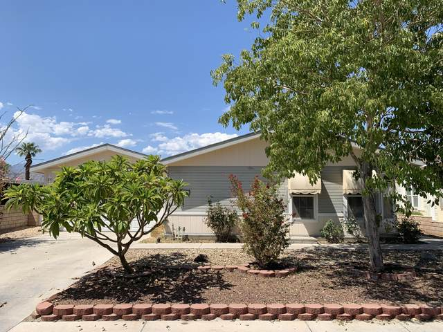 38241 Devils Canyon Drive, Palm Desert, CA 92260 (MLS #219041383) :: Brad Schmett Real Estate Group