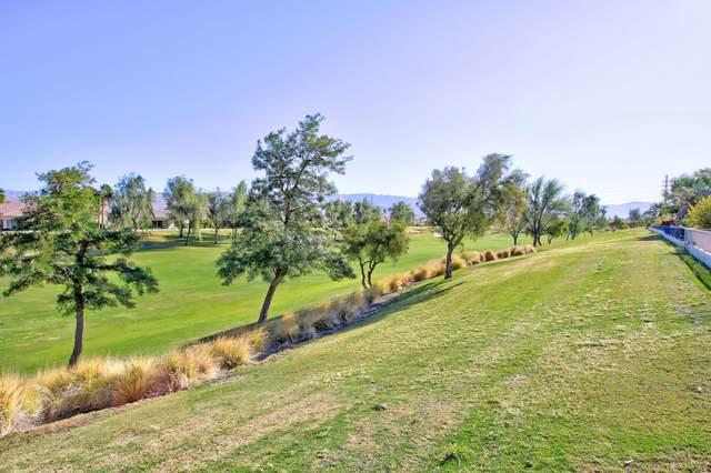 80378 Camino Santa Elise, Indio, CA 92203 (MLS #219041546) :: Brad Schmett Real Estate Group