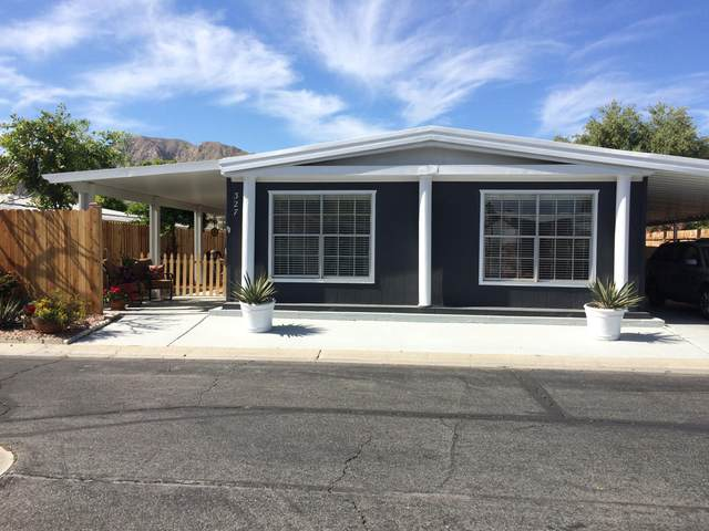 327 Via Don Benito, Cathedral City, CA 92234 (MLS #219041638) :: The John Jay Group - Bennion Deville Homes