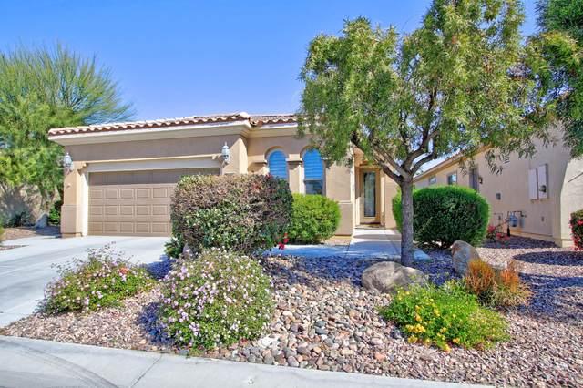 81654 Avenida Parito, Indio, CA 92203 (MLS #219041686) :: Brad Schmett Real Estate Group