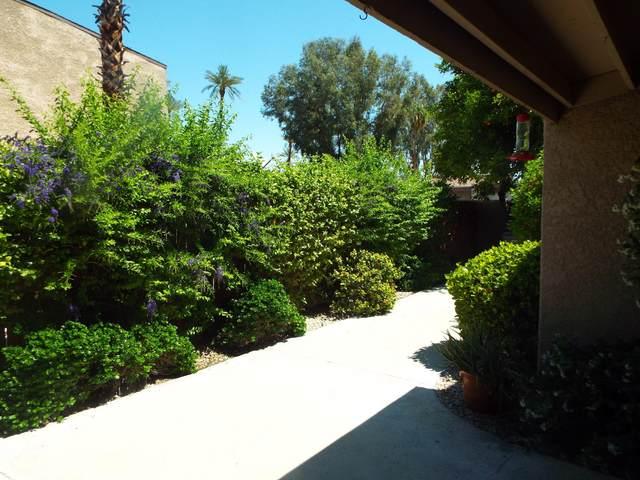 74078 Catalina Way, Palm Desert, CA 92260 (MLS #219042249) :: The Sandi Phillips Team