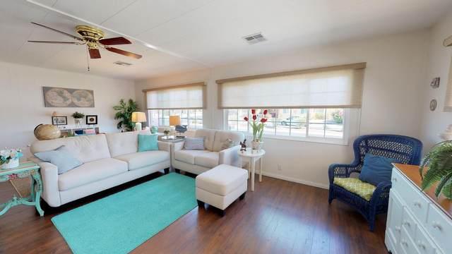 39581 Palm Greens Parkway Parkway, Palm Desert, CA 92260 (MLS #219042379) :: Brad Schmett Real Estate Group