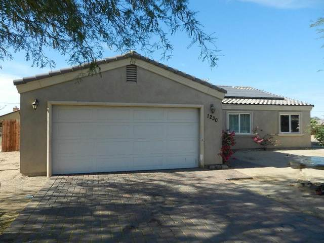 1230 Arctic Avenue, Thermal, CA 92274 (MLS #219042577) :: Brad Schmett Real Estate Group
