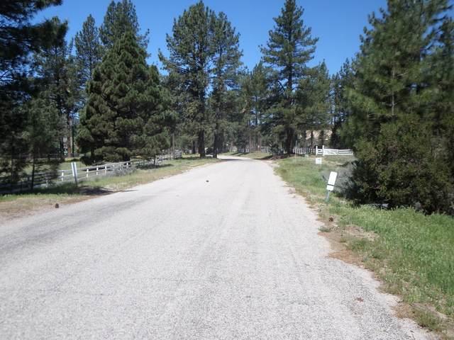 0 Butterfly Peak Road, Mountain Center, CA 92561 (MLS #219042591) :: The John Jay Group - Bennion Deville Homes