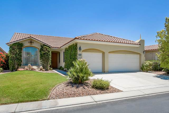 40892 Calle Los Arboles, Indio, CA 92203 (MLS #219043100) :: The Jelmberg Team