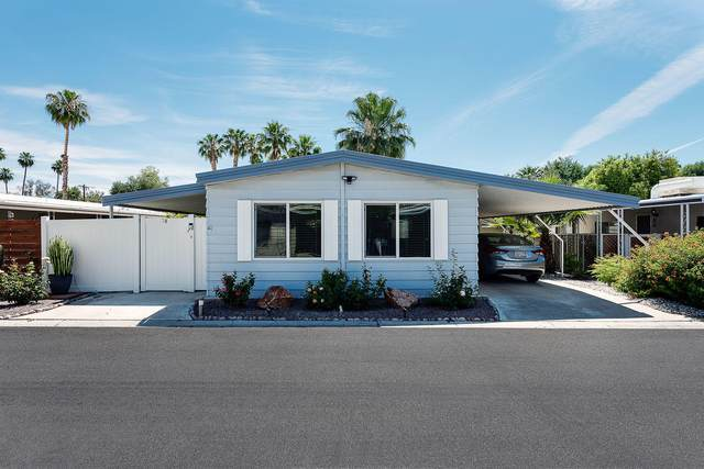 74 Calle Abajo, Palm Springs, CA 92264 (MLS #219043430) :: Brad Schmett Real Estate Group