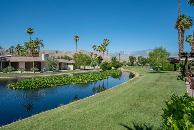 15 Lehigh Court, Rancho Mirage, CA 92270 (MLS #219043673) :: Brad Schmett Real Estate Group