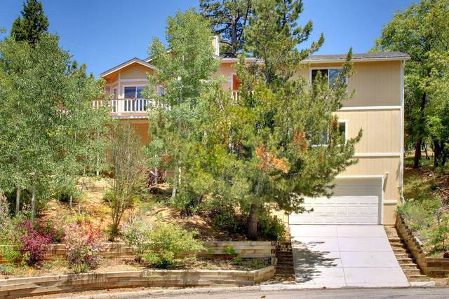 453 Sun Crest Court, Big Bear City, CA 92314 (#219043719) :: The Pratt Group