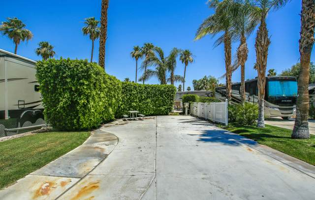 69411 Ramon Road #229, Cathedral City, CA 92234 (MLS #219043746) :: The Jelmberg Team