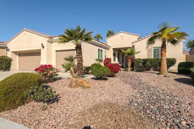 81126 Avenida Los Circos, Indio, CA 92203 (MLS #219043827) :: Brad Schmett Real Estate Group