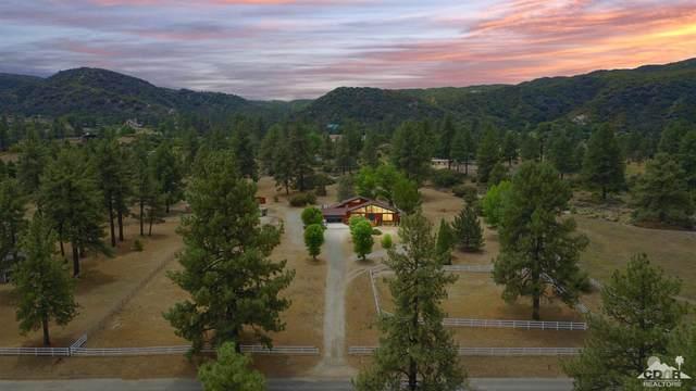 59967 Devils Ladder Road, Mountain Center, CA 92561 (MLS #219043866) :: The John Jay Group - Bennion Deville Homes