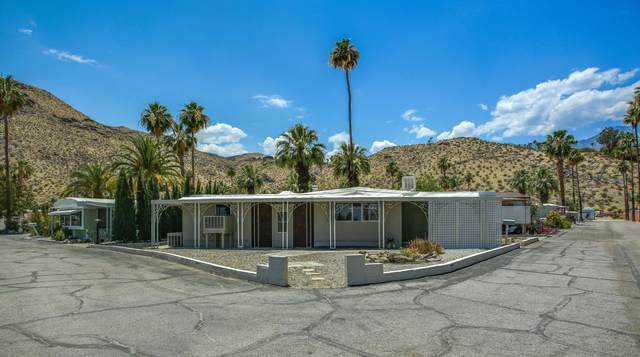 37 Santa Ana Street, Palm Springs, CA 92264 (MLS #219043989) :: Brad Schmett Real Estate Group