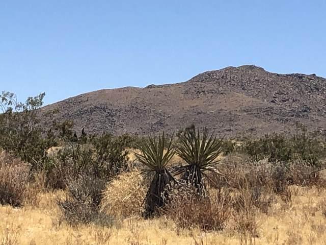 64 Cielito Drive, Joshua Tree, CA 92252 (MLS #219044040) :: The John Jay Group - Bennion Deville Homes