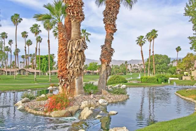 407 Red River Road, Palm Desert, CA 92211 (MLS #219044932) :: The Sandi Phillips Team