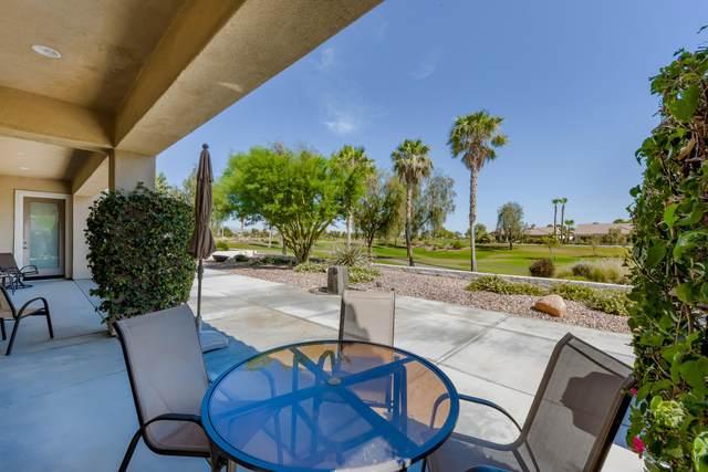 80797 Camino San Gregorio, Indio, CA 92203 (MLS #219045095) :: Brad Schmett Real Estate Group
