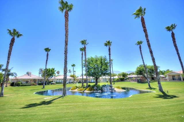 82651 Sky View Lane, Indio, CA 92201 (#219045248) :: The Pratt Group