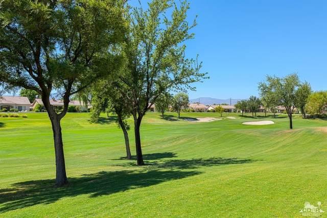 80645 Camino San Gregorio, Indio, CA 92203 (MLS #219045265) :: Brad Schmett Real Estate Group