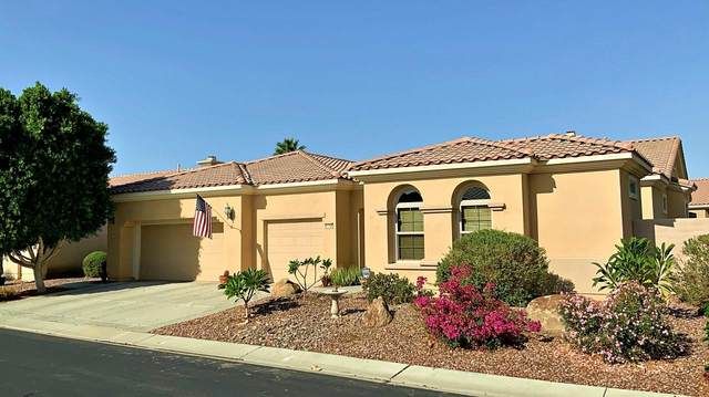 81756 Camino Montevideo, Indio, CA 92203 (MLS #219045422) :: Desert Area Homes For Sale