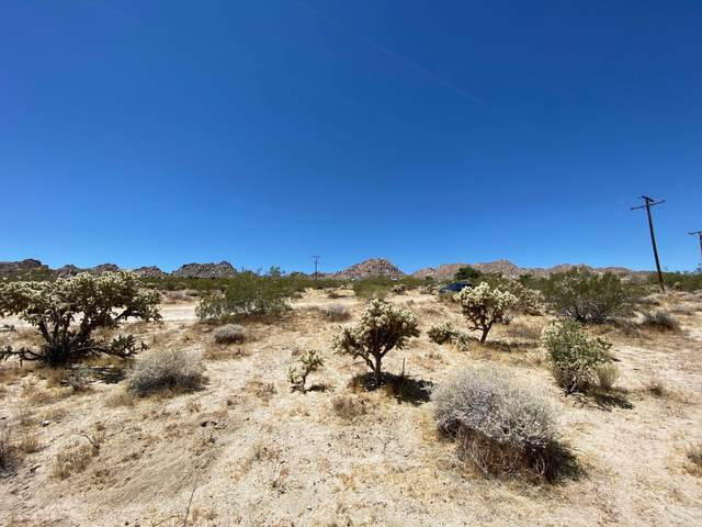 64024 Sullivan Road, Joshua Tree, CA 92252 (MLS #219045440) :: KUD Properties