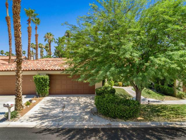 76600 Begonia Lane, Palm Desert, CA 92211 (MLS #219045524) :: Brad Schmett Real Estate Group