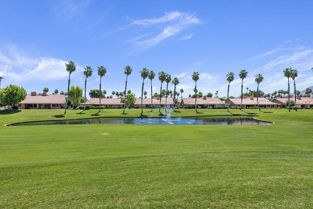 225 Cam Arroyo No, Palm Desert, CA 92260 (MLS #219045549) :: The Jelmberg Team