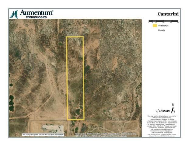 0 Cantarini Road, Moreno Valley, CA 92557 (MLS #219045579) :: The John Jay Group - Bennion Deville Homes