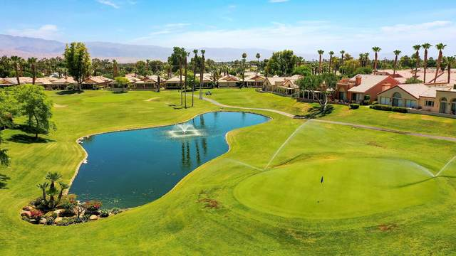 42316 Liolios Drive, Palm Desert, CA 92211 (MLS #219045899) :: Desert Area Homes For Sale