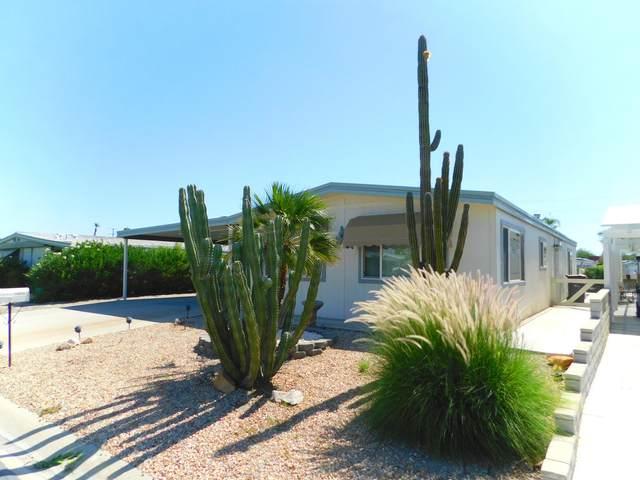 74075 Oak Springs Drive, Palm Desert, CA 92260 (MLS #219045913) :: The Jelmberg Team