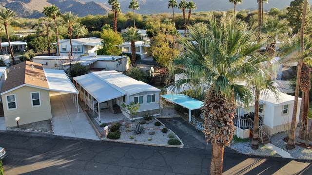 11 Cholla Lane, Palm Desert, CA 92260 (#219045992) :: The Pratt Group