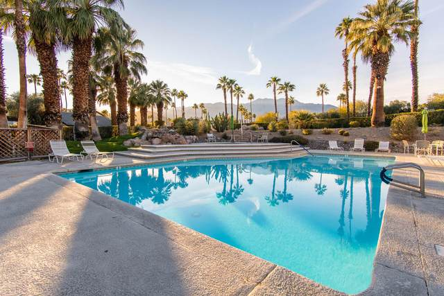 40 Portola Drive, Palm Springs, CA 92264 (MLS #219046155) :: The John Jay Group - Bennion Deville Homes