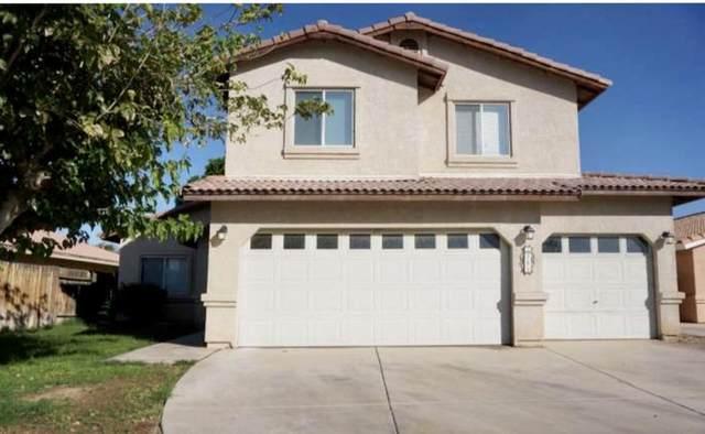 780 Oleander Lane, Blythe, CA 92225 (MLS #219046358) :: Mark Wise | Bennion Deville Homes