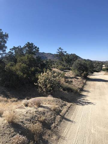 0 Scenic Dr Drive, Mountain Center, CA 92561 (MLS #219046437) :: Zwemmer Realty Group