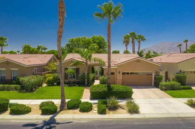 81667 Prism Drive, La Quinta, CA 92253 (MLS #219047073) :: Brad Schmett Real Estate Group