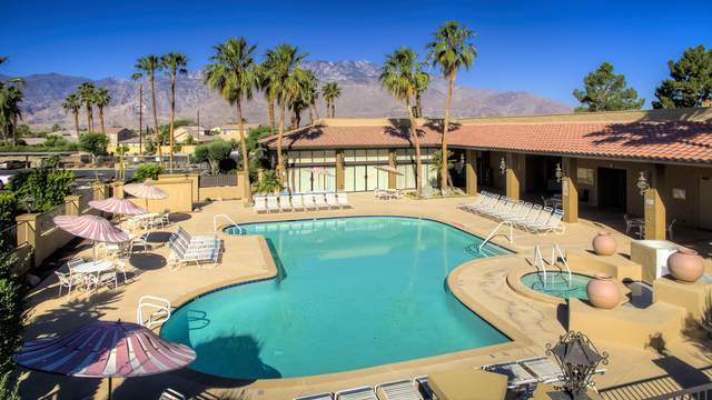 31200 Landau Boulevard, Cathedral City, CA 92234 (MLS #219047095) :: KUD Properties