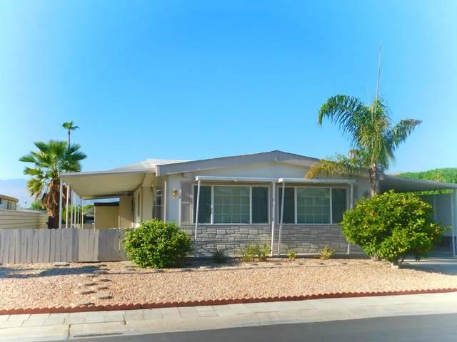 73327 Cabazon Peak Drive, Palm Desert, CA 92260 (MLS #219047146) :: Hacienda Agency Inc