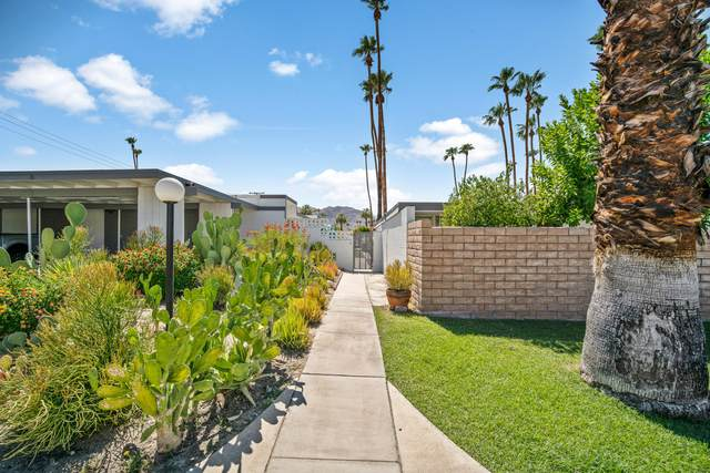 45301 Deep Canyon Road, Palm Desert, CA 92260 (MLS #219047347) :: The John Jay Group - Bennion Deville Homes