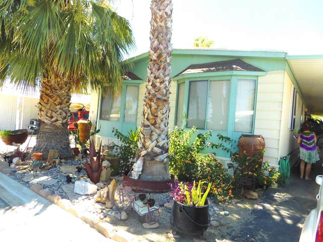 51555 Monroe Street #27, Indio, CA 92201 (MLS #219047406) :: Brad Schmett Real Estate Group