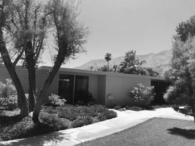 360 Cabrillo Road, Palm Springs, CA 92262 (MLS #219047465) :: Brad Schmett Real Estate Group
